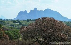 Die Berge der Provinz Nampula im Norden Mosambiks sind sehenswert. (Foto: Eckert)