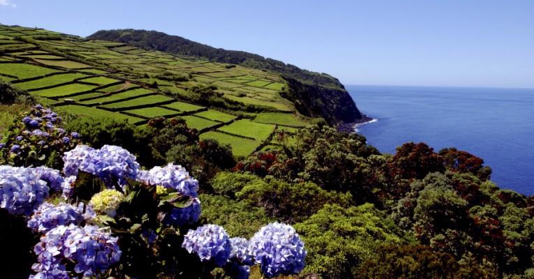 Blumen, grüne Küste, blaues Meer - die Azoren-Inse Terceira ist ein gutes Reiseziel für Wanderer. © Turismo dos Açores